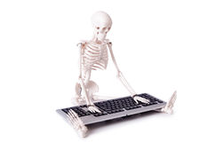 The funny skeleton working on computer Royalty Free Stock Photo
