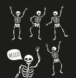 Funny skeletons in different poses with speech bubbles. Vector elements for halloween. vector illustration