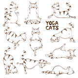 Funny sketch cat doing yoga position Royalty Free Stock Image