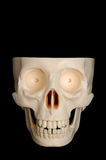 Funny Skull. A funny-looking plastic skull isolated on a black background, top of the head missing royalty free stock photos