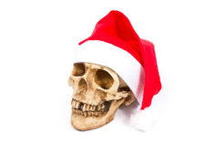 Funny skull in hat Santa Claus isolated on white background. Funny humorous skull in hat Santa Claus isolated on white background royalty free stock images