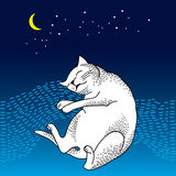 Funny sleeping cat. Series of comic cats Royalty Free Stock Photo