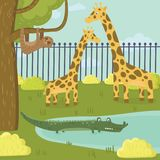 Funny sloth, giraffe and crocodile characters in zoo park. Tropical animals and wildlife. Tree, bushes and pond. Cartoon. Funny sloth, giraffe and crocodile royalty free illustration