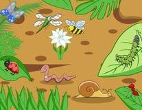 Funny small animal cartoon. Illustration of funny small animal cartoon Royalty Free Stock Photo