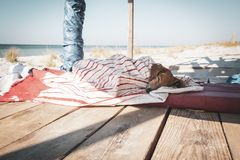 Funny small dog sleeps under a blanket, lying on the bungalow. Veranda next to the sea royalty free stock images