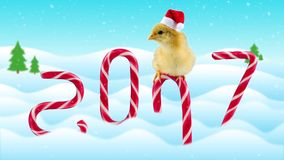 Funny small rooster (symbol of new year 2017) sitting on the candy cane. Winter day background with snowfall