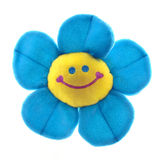 Funny smiled flower face. Isolated on white Royalty Free Stock Photography