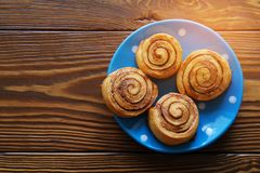 Homemade cinnamon rolls on a blue plate stand on a wooden table. Copy space for text. royalty free stock image