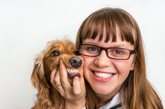 Funny smiling dog and veterinarian in veterinary clinic Stock Images