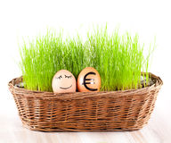 Funny smiling egg with golden euro  egg in  basket with grass. Stock Photography