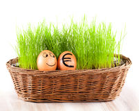 Funny smiling egg with golden euro  egg in  basket with grass. Royalty Free Stock Photography