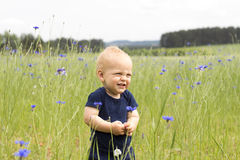 Funny smiling infant kid in the field of blue cornflowers Royalty Free Stock Photos