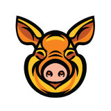 Funny smiling orange pig. Pig head mascot emblem - vector image of swine head Stock Photos