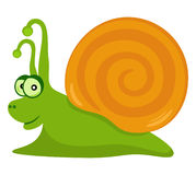 Funny Snail. Vector object isolated Stock Photo