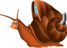 Funny snail cartoon. This is file of EPS10 format Royalty Free Stock Photo