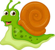 Funny snail cartoon for you design Stock Image