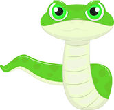 Funny Snake Royalty Free Stock Photo