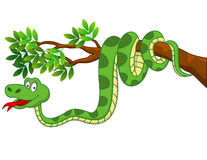 Funny Snake cartoon Stock Image