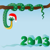 Funny snake (symbol of 2013 year) Royalty Free Stock Photography