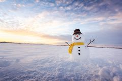 Funny snowman in black hat Royalty Free Stock Images
