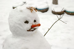Funny snowman with carrot nose. Stock Images