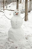 Funny snowman with carrot nose. Royalty Free Stock Photos