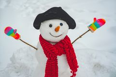 Funny snowman with a carrot instead of a nose and in a warm knitted hat on a snowy meadow on a blurred snow background.  stock images