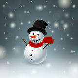 Funny snowman Royalty Free Stock Photography