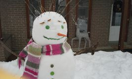 Funny snowman Stock Photography