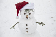 Funny snowman with hands out of pine branches dressed in a red c Royalty Free Stock Images