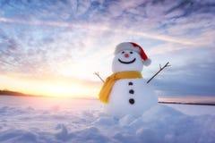 Free Funny Snowman In Santa Hat Royalty Free Stock Photo - 102923525