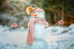 Funny snowman in a park Royalty Free Stock Image