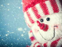 Funny snowman portrait against snowfall Royalty Free Stock Photos