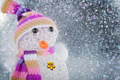 Funny Snowman Royalty Free Stock Images