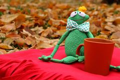 Funny soft toy prince frog with cup of tea on red carpet and fallen leaves waiting for love and princess. Waiting and dating concept. Autumn love gift and Royalty Free Stock Image