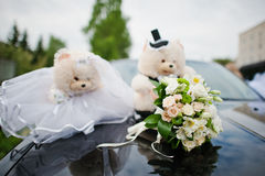 Funny soft toys Stock Images