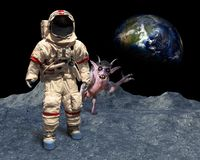 Funny Astronaut, Space Alien, Photobomb, Moon Landing