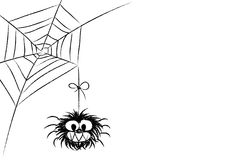 Funny Spider Bw Royalty Free Stock Photography