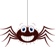 Funny spider cartoon Royalty Free Stock Image