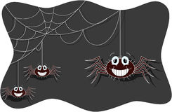 Funny spider cartoon Stock Images