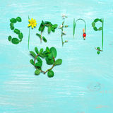 Funny spring background Stock Image