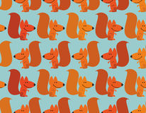 Funny squirrel background. Cute redhead small animal. Rodent fro Stock Images