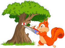 Funny squirrel saws tree branch Stock Images