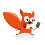 Funny squirrel with smartphone Stock Photo