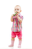 Funny standing baby with musical toy Royalty Free Stock Photo