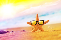 Funny starfish with sunglass on the sandy beach. At ocean background stock photography