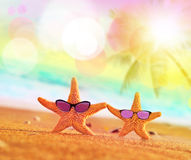 Funny starfish with sunglass on the sandy beach. At ocean background stock photos