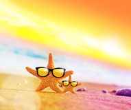 Funny starfish with sunglass on the sandy beach. At ocean background royalty free stock images
