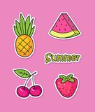 Funny stickers with summer fruits and berries. Collection of cute stickers with summer fruits and berries Royalty Free Stock Images
