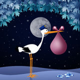 Funny stork with baby girl in the night Royalty Free Stock Photography
